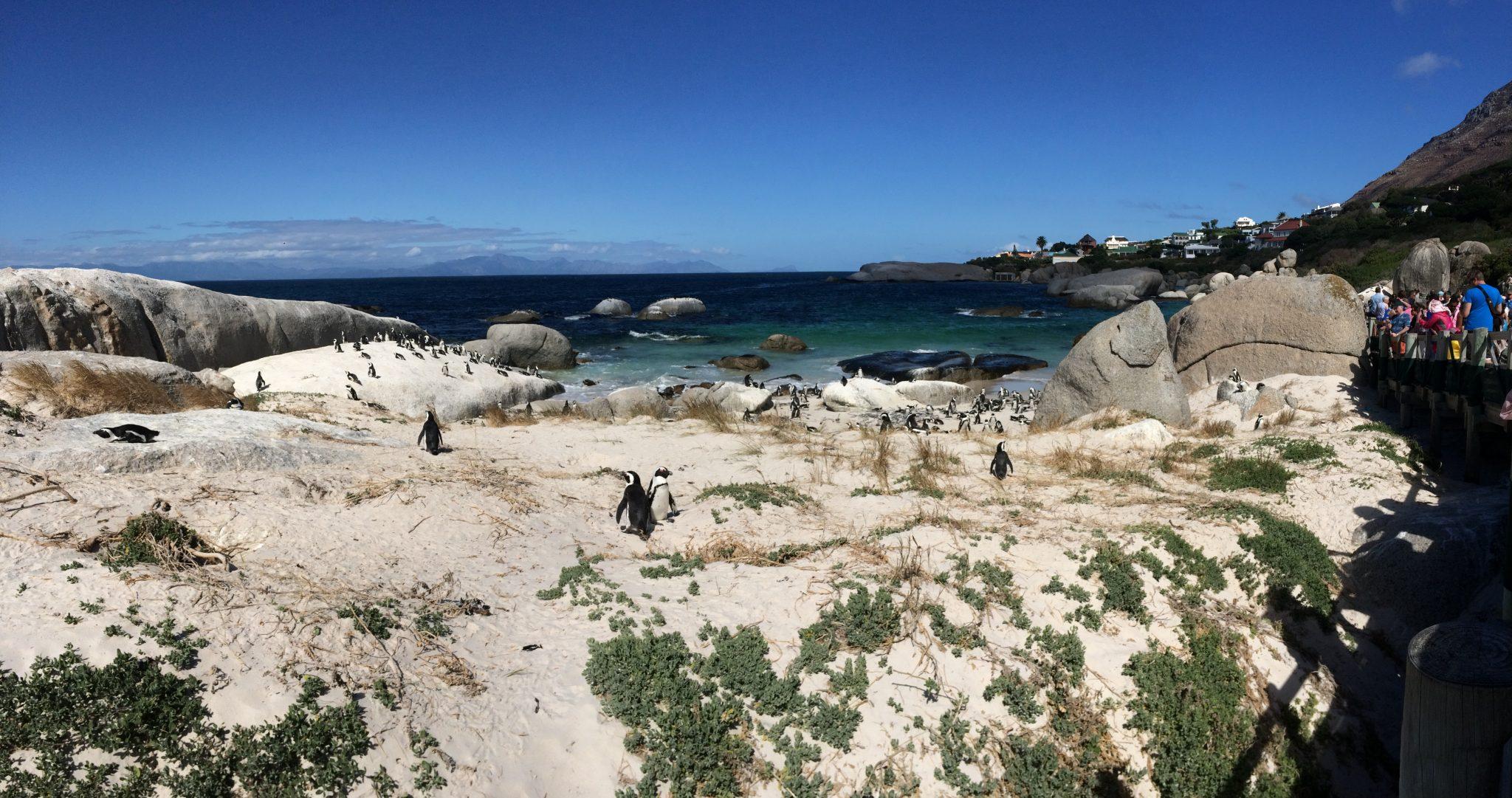 Boulders Bay