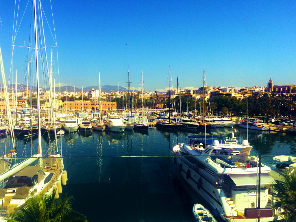 the harbour full of boats at palma de mallorca