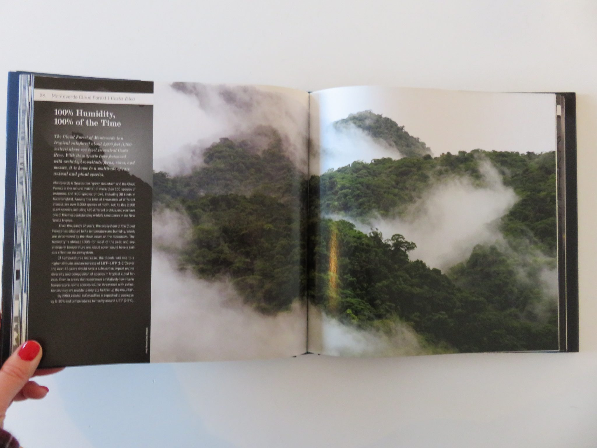 No 4. The rain forest in Costa Rica