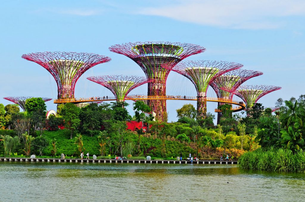 a picture of the tree towers in Gardens by the Bay