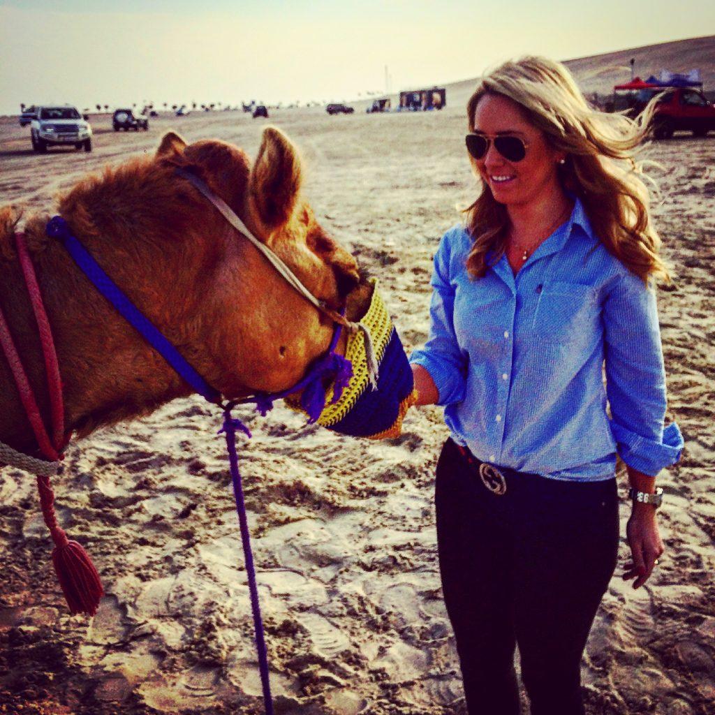 Camel in sealine desert in doha