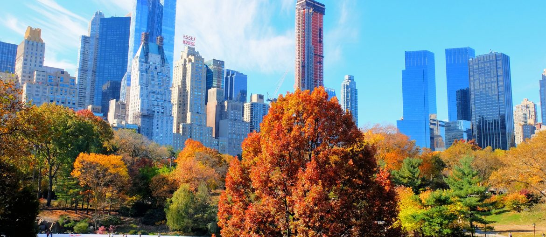 Central Park i New York