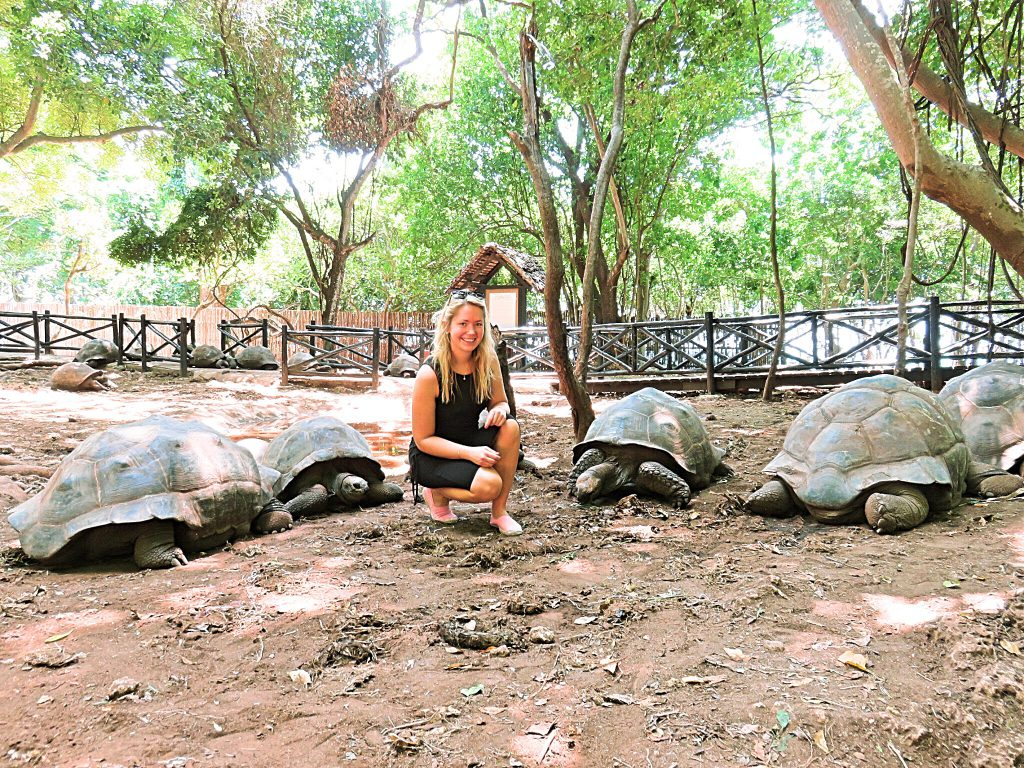 a picture of me with four giant tortoises