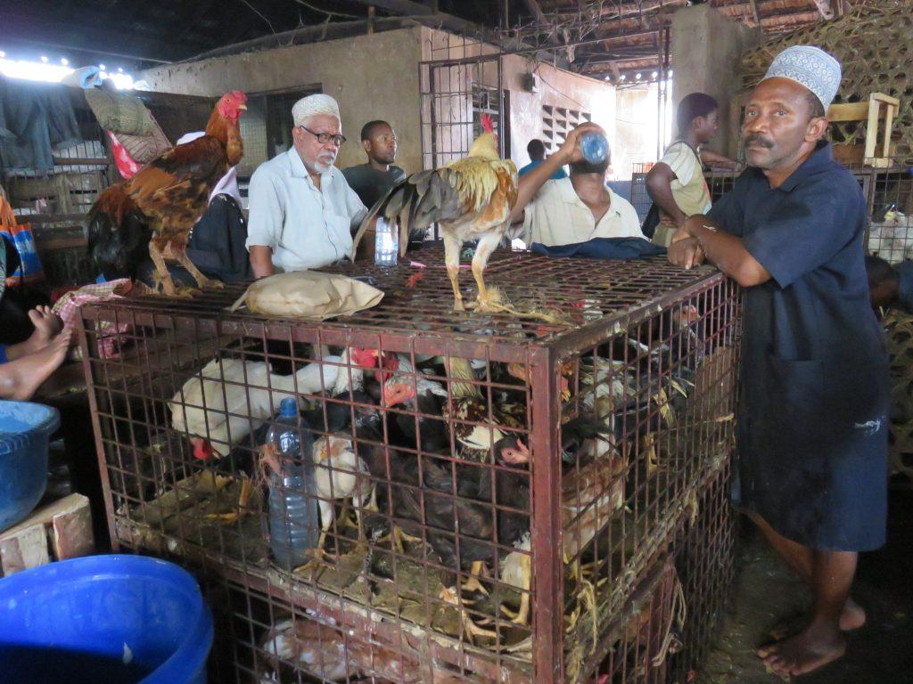 chickens at a chicken shop