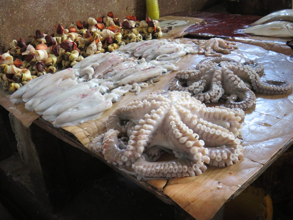 octopus and squid at the sea food market