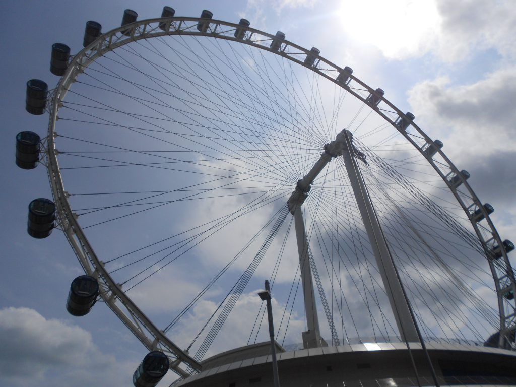 a picture of the Singapore Flyer