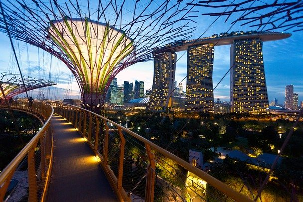 a picture of the walkway at the Gardens by the Bay