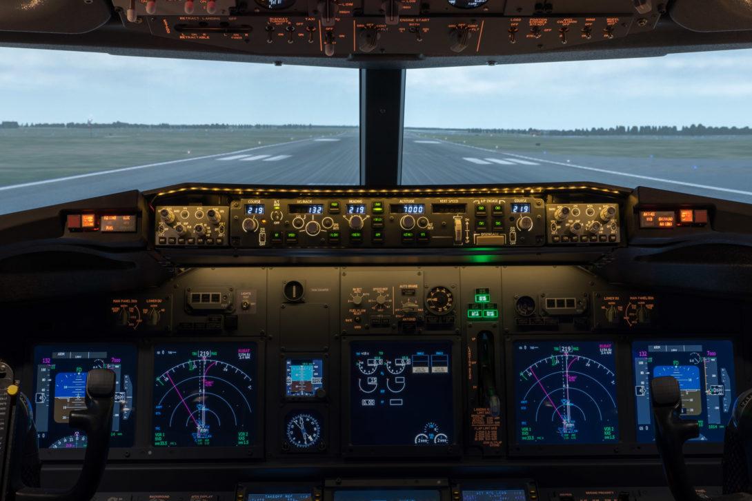 Avians Simulation