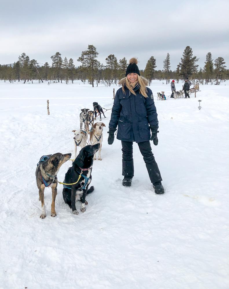 Lapland Sleddog Adventures Lapland Sleddog Advenures visste att jag bodde på hotellet så de kom och hämtade upp oss och ett annat par i hotellets reception med en minibuss och körde till Kurravaara som ligger ungefär 15 minuter med bil från Kiruna. Där bor ägaren till Lapland Sleddog Adventures Gaynor med sina hundar hon jobbar tillsammans med när man åker hundsläde eller Husky Tour som det också kallas :)
